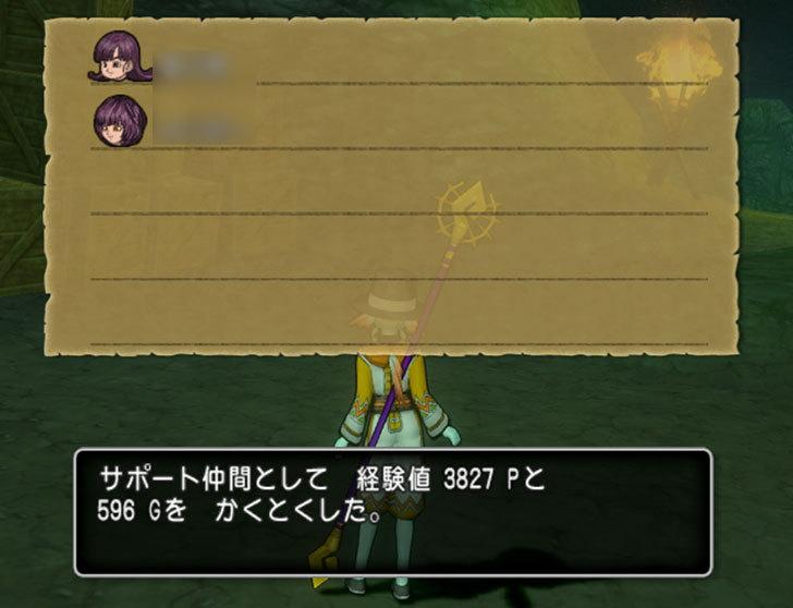 ドラゴンクエストX、プレイ中431-2.jpg