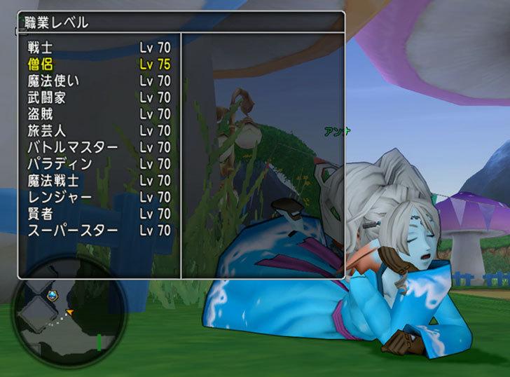ドラゴンクエストX、プレイ中463-3.jpg