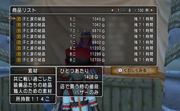 ドラゴンクエストX、プレイ中480-2.jpg
