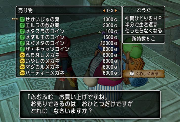 ドラゴンクエストX、プレイ中507-2.jpg