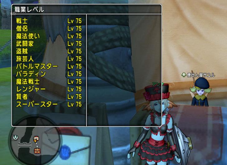 ドラゴンクエストX、プレイ中521-2.jpg