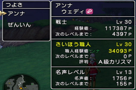 ドラゴンクエストX、プレイ中99-2.jpg