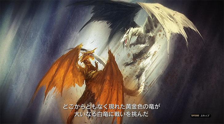 ドラゴンズドグマ-オンライン1-3.jpg