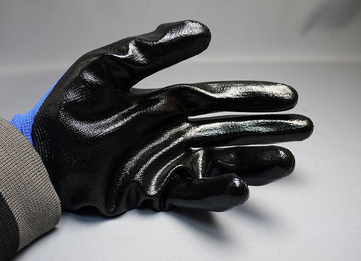 ニトリル背抜き手袋-3双組をケイヨーデイツーで買って来た7.jpg