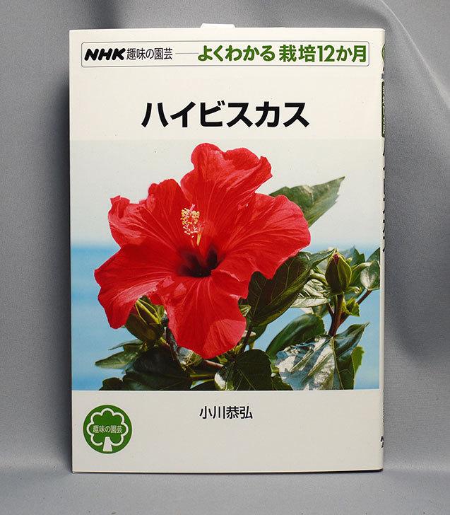ハイビスカス-(NHK趣味の園芸-よくわかる栽培12か月-)小川-恭弘-(著)を買った1.jpg