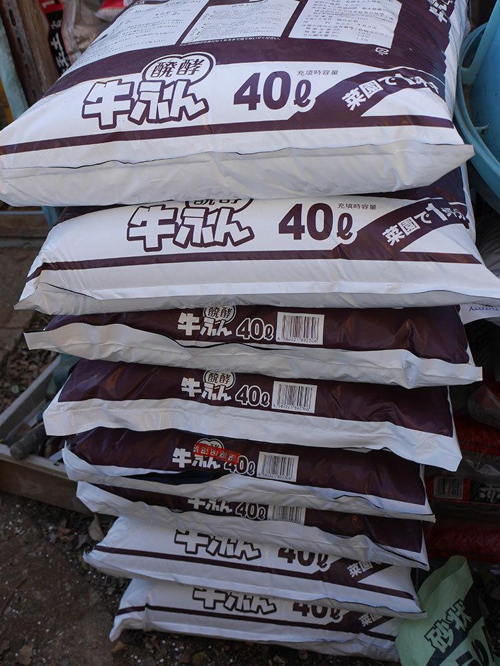 バラの寒肥用に醗酵牛ふん40Lを8個ケイヨーデイツーで買って来た。2021年-001.jpg