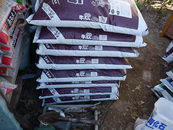 バラの寒肥用に醗酵牛ふん40Lを8個ケイヨーデイツーで買って来た。2021年-002.jpg