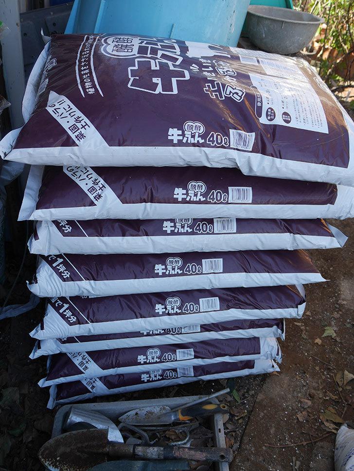 バラの寒肥用に醗酵牛ふん40Lを8個ケイヨーデイツーで買って来た。2021年-003.jpg