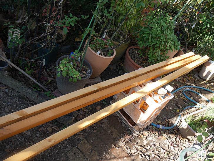 バラの誘引に使う角材、赤松45×45mm-2mに木部保護塗料を塗った7.jpg