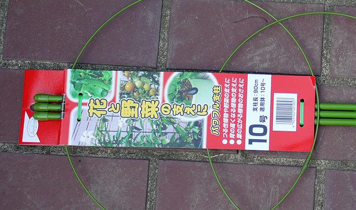 パワフル支柱10号をケイヨーデイツーで買って来た2.jpg