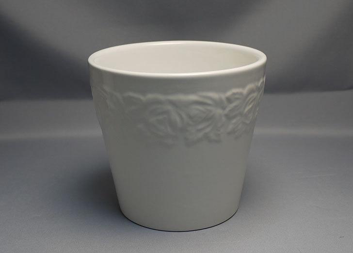 フラワーレリーフ植木鉢-花盆-陶器植木鉢L174を2個買って来た2.jpg