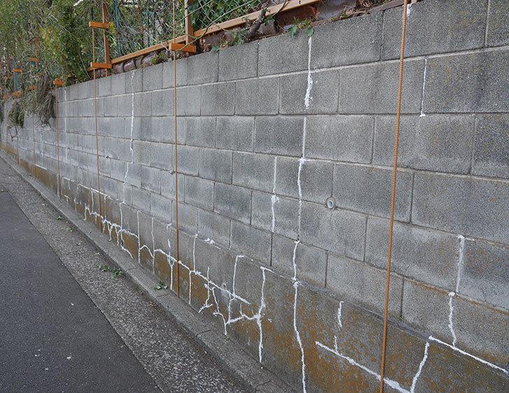 ブロック塀のひび割れの補修をした。2020年-1.jpg