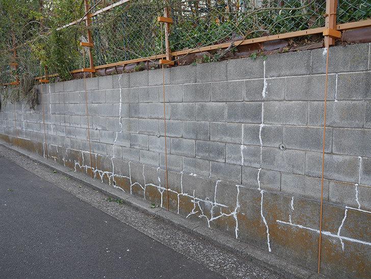 ブロック塀のひび割れの補修をした。2020年-9.jpg