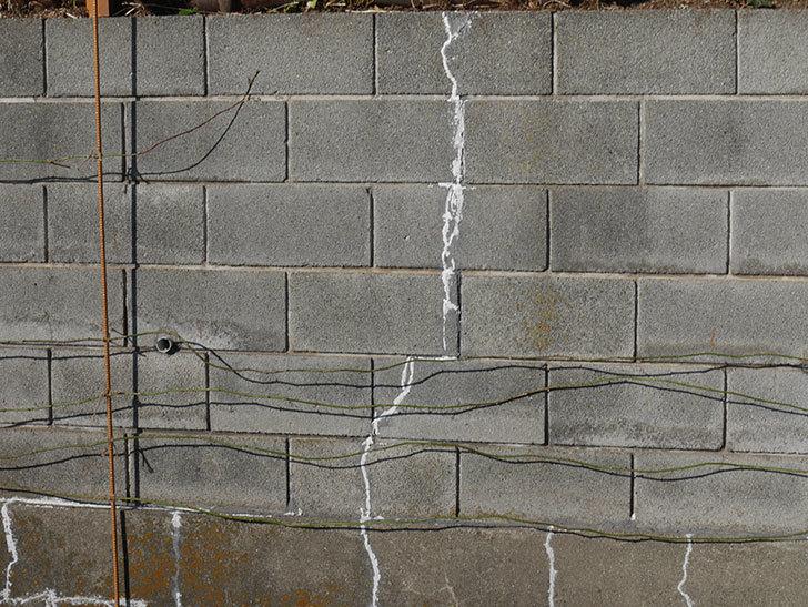 ブロック塀のひび割れの補修跡を塗装した。2020年-2.jpg