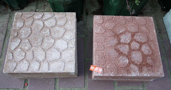 プチカラー平板のレッドとオレンジを3枚ずつをケイヨーデイツーで買って来た1.jpg