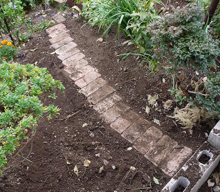 マーブルブリックレンガを花壇に並べてアプローチを作った10.jpg
