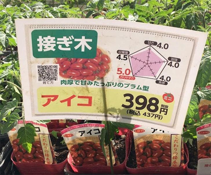 ミニトマトの苗アイコ1株とおいしいミニトマト2株をホームズで買って来た。2020年-4.jpg