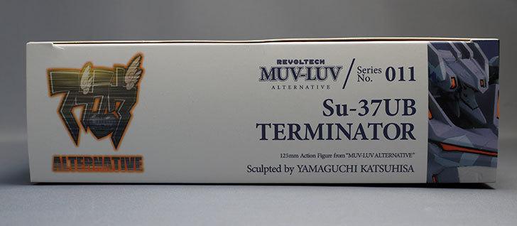 リボルテック-マブラヴ-オルタネイティヴ-Series.011-Su-37UB-チェルミナートルを買った3.jpg