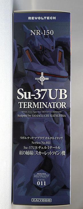 リボルテック-マブラヴ-オルタネイティヴ-Series.011-Su-37UB-チェルミナートルを買った6.jpg