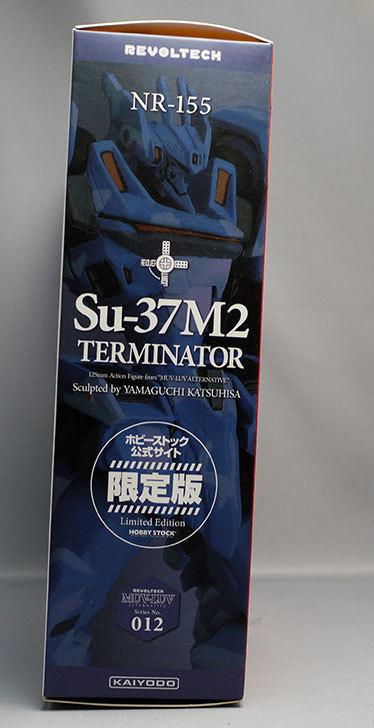 リボルテック-Su-37M2-チェルミナートル-フィカーツィア・ラトロワ機を買った4.jpg