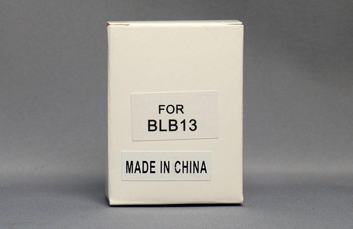 ロワジャパン-DMW-BLB13互換バッテリーを買った2.jpg