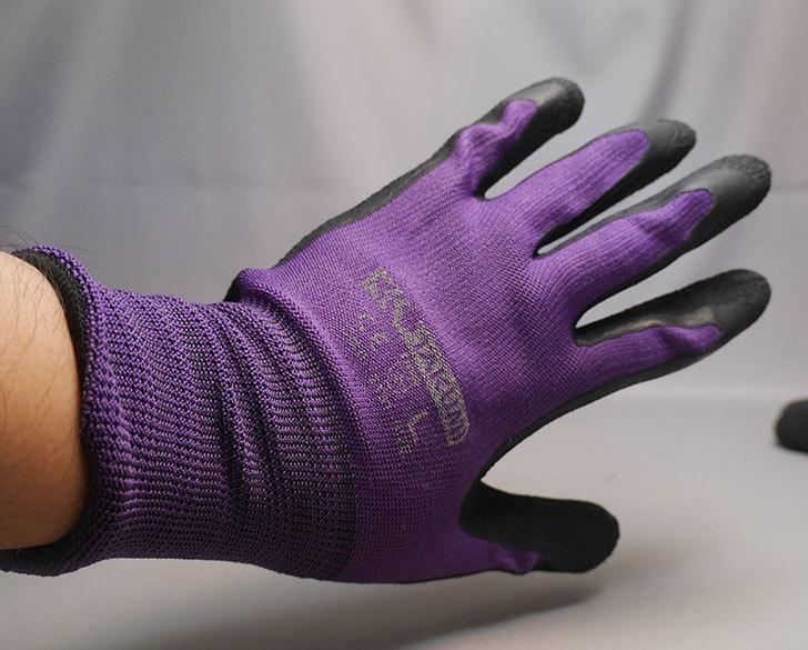 ワークマンで匠の手-天然ゴム背抜き手袋10双組-N-2800-Lサイズを買ってきた4.jpg
