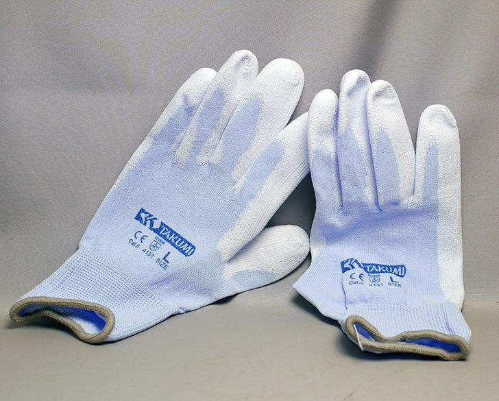 ワークマンで匠の手ウレタン背抜き手袋10双組-P-1800-Lサイズを買ってきた3.jpg