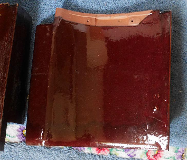 三州瓦-和形(H1WA01-000025)、53A形の袖瓦-(右)を2枚買った3.jpg