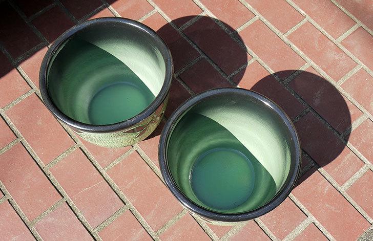 不二貿易-スペイン素焼き鉢-84466が届いた3.jpg