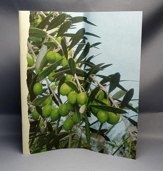 井上誠耕園-緑果オリーブオイル-450g大ビンを買った9.jpg
