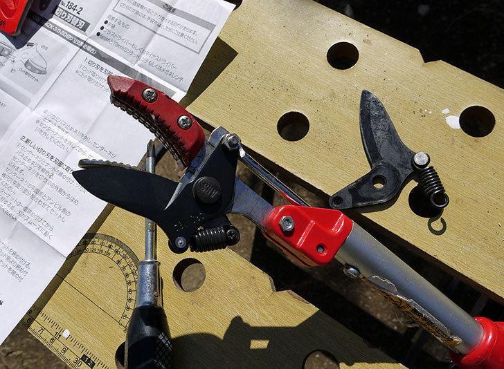 伸縮式高枝鋏ズ―ムチョキKタイプ-アンビルタイプ-つかみ付替刃-184-2を取り付けた1.jpg
