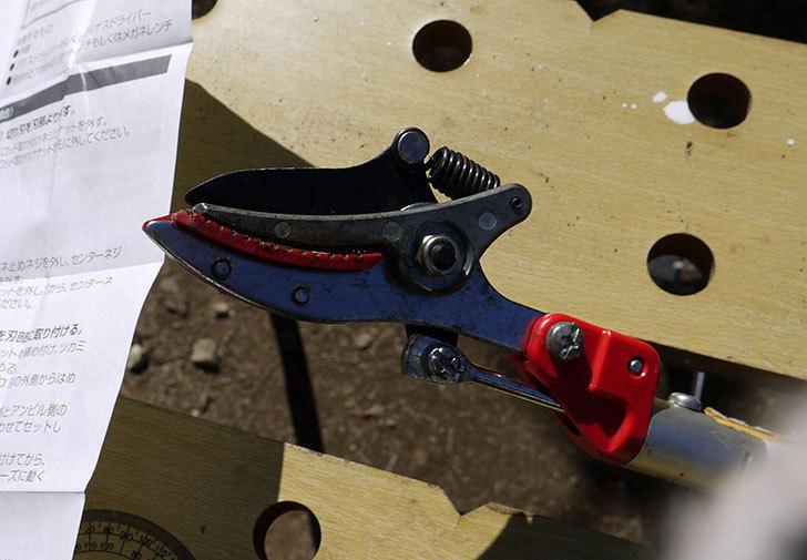伸縮式高枝鋏ズ―ムチョキKタイプ-アンビルタイプ-つかみ付替刃-184-2を取り付けた2.jpg