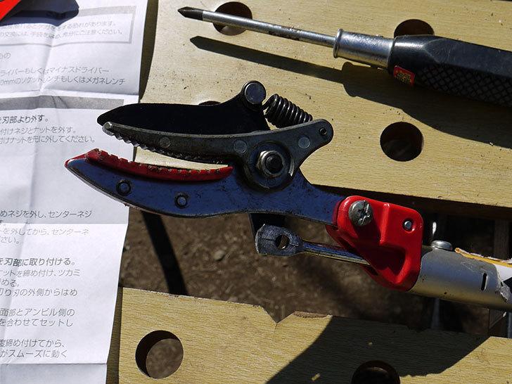 伸縮式高枝鋏ズ―ムチョキKタイプ-アンビルタイプ-つかみ付替刃-184-2を取り付けた3.jpg