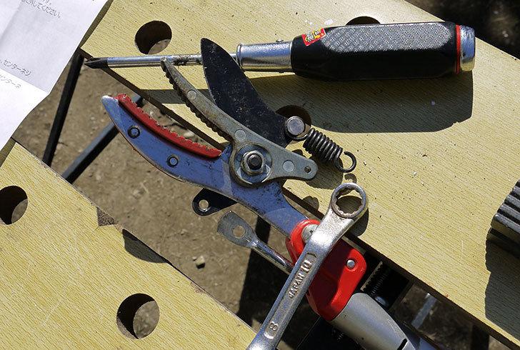伸縮式高枝鋏ズ―ムチョキKタイプ-アンビルタイプ-つかみ付替刃-184-2を取り付けた6.jpg