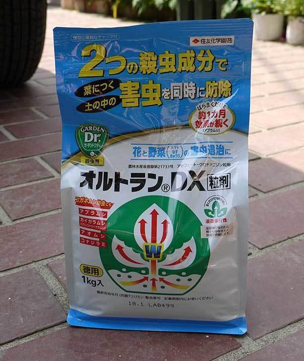住友化学園芸-オルトランDX粒剤-1kgを買った1.jpg