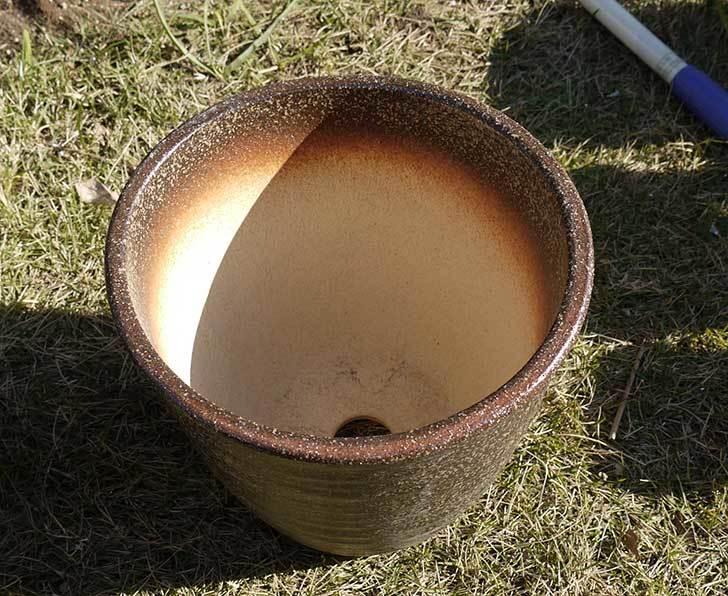 信楽焼き窯肌植木鉢-ネイチャーロング-窯肌をケイヨーデイツーで買って来た10.jpg