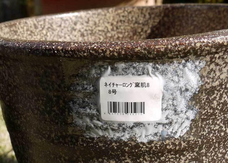信楽焼き窯肌植木鉢-ネイチャーロング-窯肌をケイヨーデイツーで買って来た11.jpg