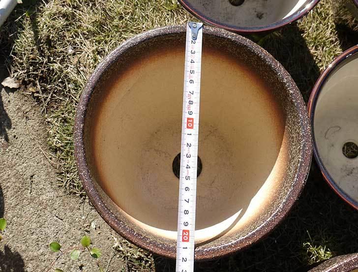 信楽焼き窯肌植木鉢-ネイチャーロング-窯肌をケイヨーデイツーで買って来た12.jpg