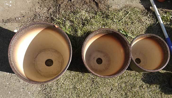 信楽焼き窯肌植木鉢-ネイチャーロング-窯肌をケイヨーデイツーで買って来た3.jpg