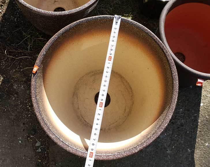信楽焼き窯肌植木鉢-ネイチャーロング-窯肌をケイヨーデイツーで買って来た4.jpg
