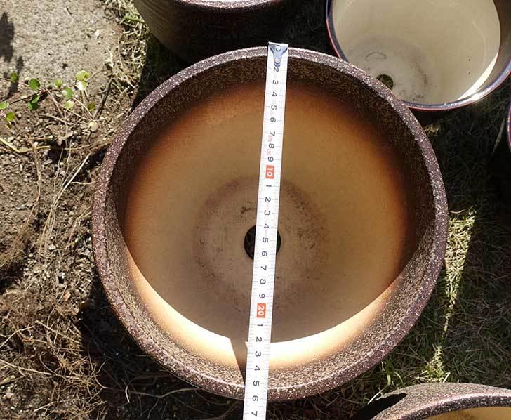 信楽焼き窯肌植木鉢-ネイチャーロング-窯肌をケイヨーデイツーで買って来た6.jpg