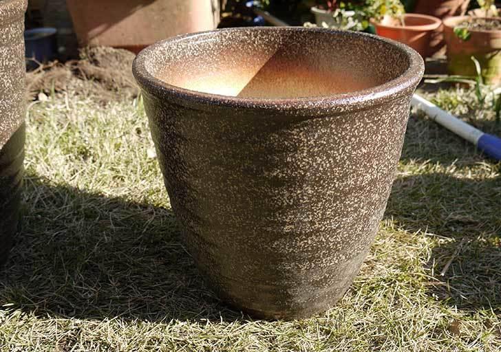 信楽焼き窯肌植木鉢-ネイチャーロング-窯肌をケイヨーデイツーで買って来た9.jpg