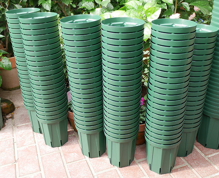 兼弥スリット鉢-5、6号ロングタイプを楽天の所沢植木鉢センターで買った2.jpg