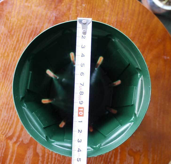 兼弥スリット鉢-ロングサイズ各種を楽天で大量買いした26.jpg
