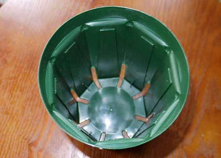 兼弥スリット鉢-ロングサイズ各種を楽天で大量買いした29.jpg