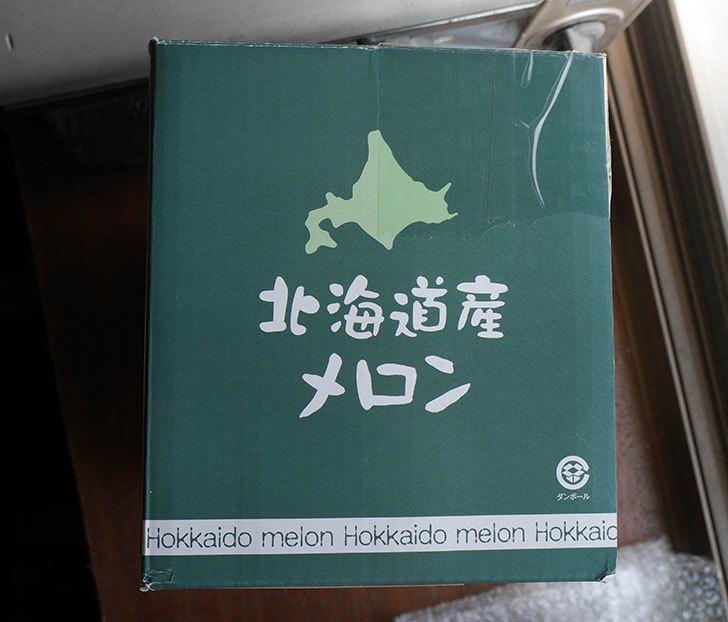 北海道メロンを貰った6.jpg