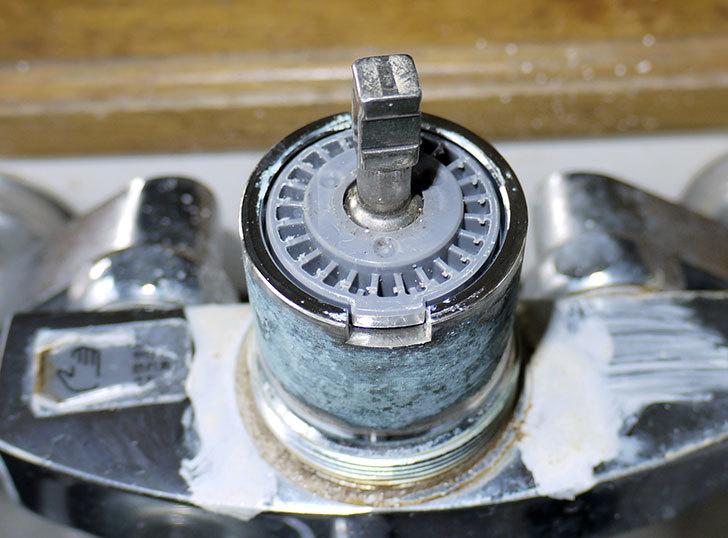台所の混合栓、TOTO-TKG30URXが水漏れ16.jpg