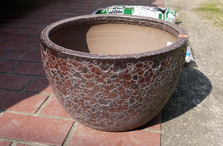 和風陶器鉢Mの茶をケイヨーデイツーで買って来た1.jpg