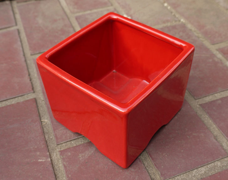 四角の鉢をケイヨーデイツーで買って来た3.jpg