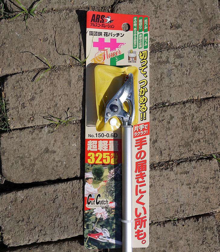 園芸鋏-花パッチンを買った2.jpg